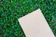 Cardbroad förlade på grön bladmodell Royaltyfri Bild