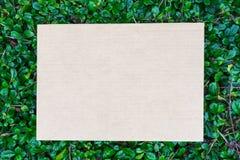 Cardbroad förlade på grön bladmodell Royaltyfri Foto