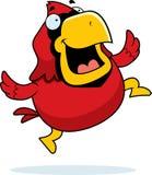 Cardeal Jumping dos desenhos animados Imagens de Stock