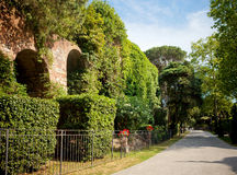 Carden Giardino Scotto in Pisa Stock Photography