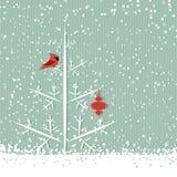 Cardenal y árbol rojos Fotos de archivo