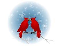 Cardenales rojos que se sientan en árbol stock de ilustración