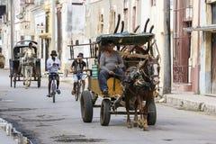 Cardenas, Cuba - 26 novembre 2015 : Chariot de cheval Photo libre de droits