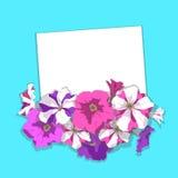 Cardez avec des pétunias de fleurs Vecteur Photo libre de droits