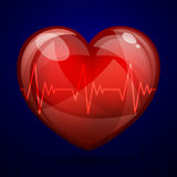 Cardiac Frequency Stock Photos