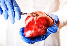 Cardiac surgeon, abstract Stock Image