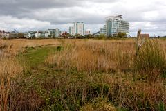 Cardiff Bay Wetlands Reserve Royalty Free Stock Photos
