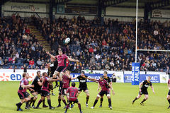 Cardiff Blues Line-in Stock Images