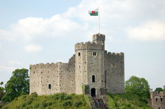 Cardiff Castle in Wales. Cardiff Castle in summertime with tourists on the grass Stock Images