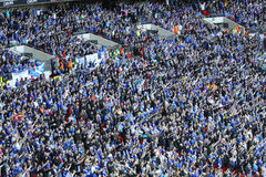 Cardiff City fans celebrating a goal Royalty Free Stock Images