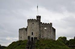 Cardiff kasztel Zdjęcia Stock