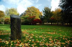 Cardiff park. Autumn cardiff park with leaves, grass and trees royalty free stock image