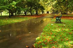 Cardiff park. Autumn cardiff park with bench, path, and leaves on the field stock images