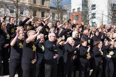 CARDIFF, PAYS DE GALLES - 23 MARS : Le 23 mars 2014 à Cardiff le Roc Photographie stock