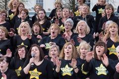 CARDIFF, PAYS DE GALLES - 23 MARS : Le 23 mars 2014 à Cardiff le Roc Images libres de droits