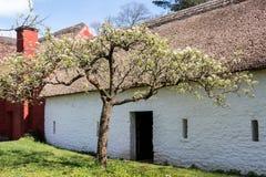 CARDIFF/UK - 19 APRIL: Kennixtonboerderij bij St Fagans Nationa royalty-vrije stock afbeelding