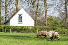 CARDIFF/UK - 19 APRIL: Pen-rhiw-sluit Unitaristische Kapel bij St Fagans N op stock fotografie