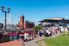 CARDIFF/UK - AUGUSTI 27: Ferris Wheel och Pierhead byggnad i C Fotografering för Bildbyråer