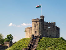 CARDIFF, WALES - JUNI 8: Het Levensonderhoud bij het Kasteel van Cardiff in Cardiff stock foto's
