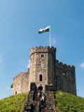 CARDIFF, WALES - JUNI 8: Het Levensonderhoud bij het Kasteel van Cardiff in Cardiff royalty-vrije stock foto's