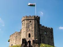 CARDIFF, WALES - JUNI 8: Het Levensonderhoud bij het Kasteel van Cardiff in Cardiff royalty-vrije stock afbeeldingen