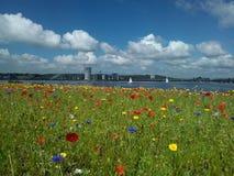 Cardiff zatoka fotografia stock