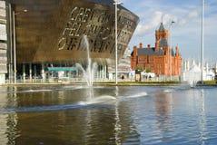 Cardiff zatoka fotografia royalty free