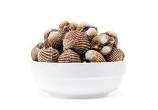 Cardiidae shellfish in white bowl isolated on white background. Cardiidae shellfish seafood in white bowl isolated on white background Stock Images