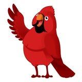 cardinal libre illustration