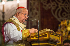 Cardinal and Archbishop of Krakow Stanislaw Dziwisz during service on the occasion annual Polish national and public holiday Stock Images