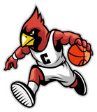 Cardinal as a basketball mascot Royalty Free Stock Image
