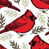 Cardinal background Royalty Free Stock Photography