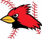 Cardinal And Baseball Laces Royalty Free Stock Image