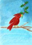 Cardinal Christmas Stock Photo