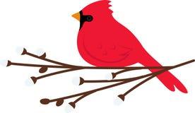 Cardinal Christmas Stock Photography