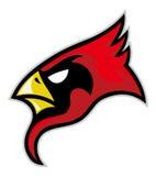 Cardinal head Stock Images