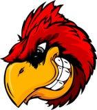 Cardinal or Red Bird Head Cartoon Stock Image