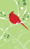 Cardinal on snowy branch. A stylized vertical illustration of a cardinal on a snowy branch with berries vector illustration
