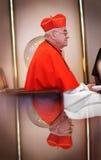 Cardinal Vlk Stock Photos