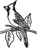 cardinale royalty illustrazione gratis