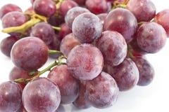 Cardinale Grapes isolato su bianco Fotografia Stock Libera da Diritti