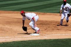 Cardinaux de MLB St Louis photo libre de droits