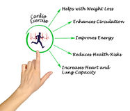 Cardio Exercise. Presenting Diagram of Cardio Exercise Stock Images