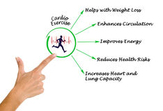 Cardio Exercise. Presenting Important components of Cardio Exercise stock image