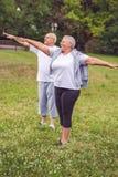 Cardio exercise for senior- senior couple exercise stock photos