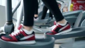 Cardio training, Walking on sports simulators into gym. Cardio training, feet girls in sneakers on sports simulators into gym close-up stock footage