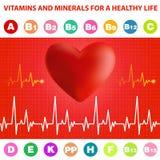 Cardiogram, heart and vitamins. Stock Photo