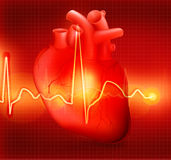 Cardiogramme de coeur Photographie stock libre de droits