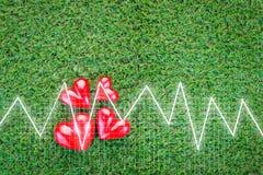 Cardiogramme de coeur avec le coeur sur le fond d'herbe Photographie stock libre de droits