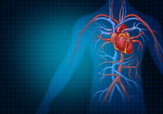 Cardiología y concepto cardiovascular del corazón Foto de archivo
